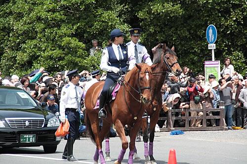 ノルウェーの騎馬警察の写真がファンタジーでかっこいいと話題に  [959785633]YouTube動画>7本 ->画像>30枚