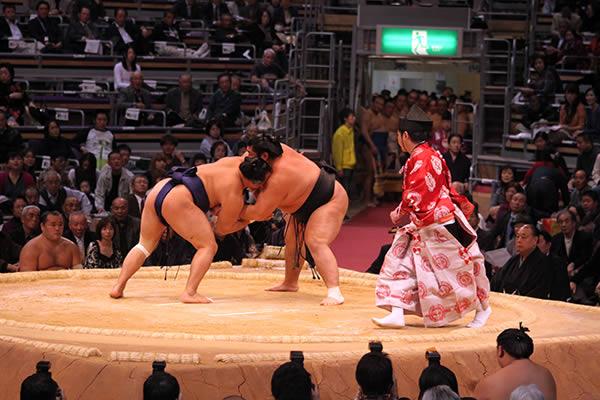 大相撲の力士になるには 年収・収入・なり方など 職業ガイド
